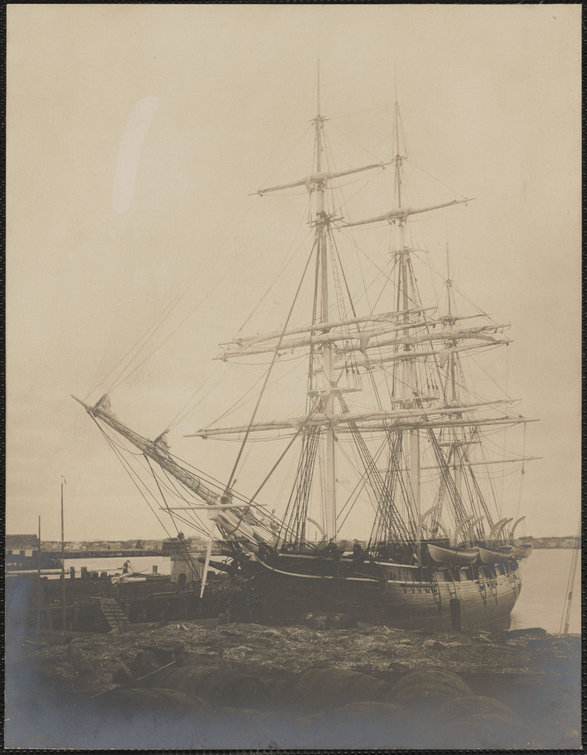 A photograph of whaling ship Young Phoenix shown fully rigged at dock in New Bedford harbor. Seaweed and whale oil barrels in foreground.    Courtesy of the Trustees of the New Bedford Free Public Library, Joseph G. Tirrell Photograph Collection