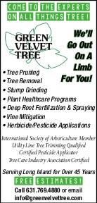 GREEN VELVET TREE