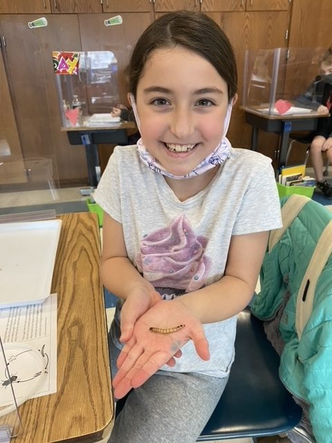 East Quogue third grader Sheila Greiner enjoys a visit from BOCES where third graders learned about insects through hands-on exploration.