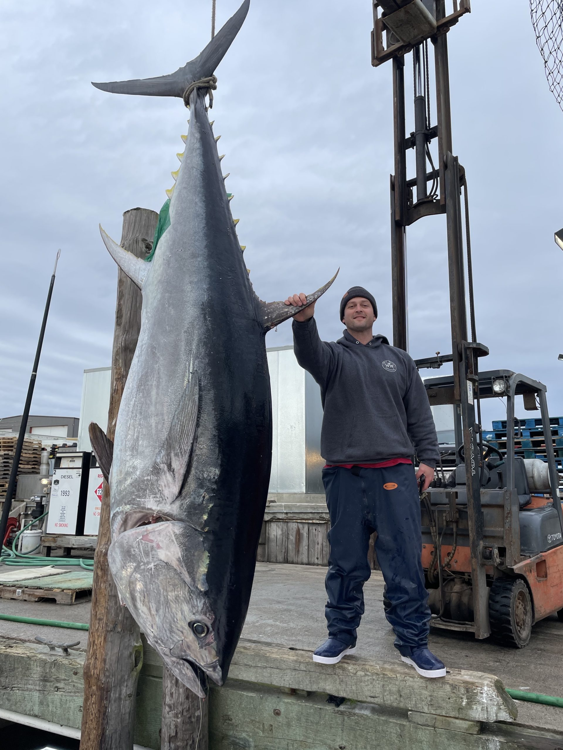 Marty Clarke of Sag Harbor with one of the giant bluefin tuna that some diehard local fishermen follow to North Carolina in winter.