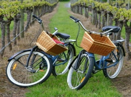 Guided Classic Country Wine Bike Tour