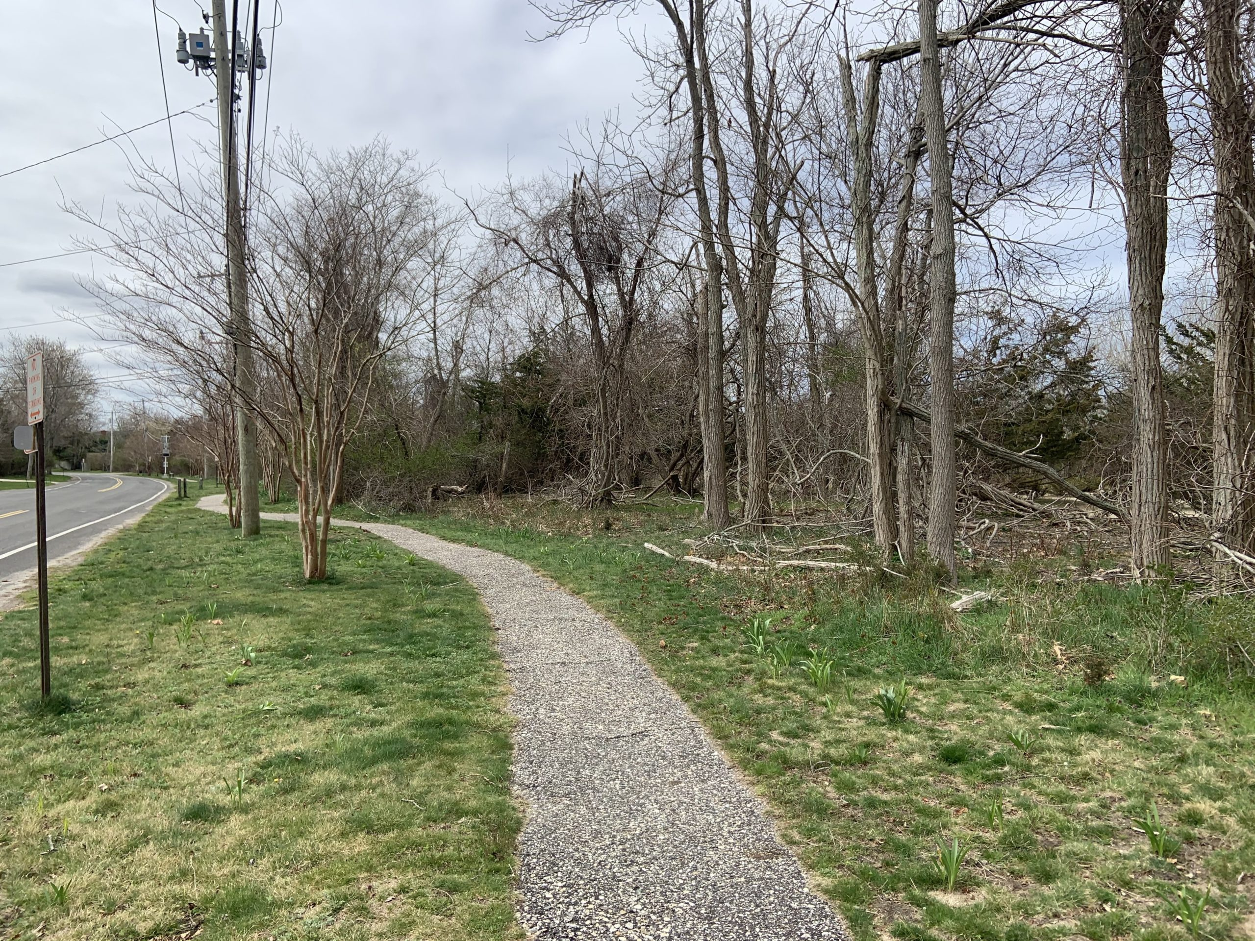 The Sag Harbor Village Board heard a proposal to create a nature education center in the Cilli Farm preserve off Long Island Avenue this week. STEPHEN J. KOTZ