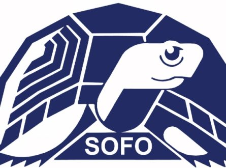 SOFO's Young Environmentalist Society (YES!): Ages 10-16