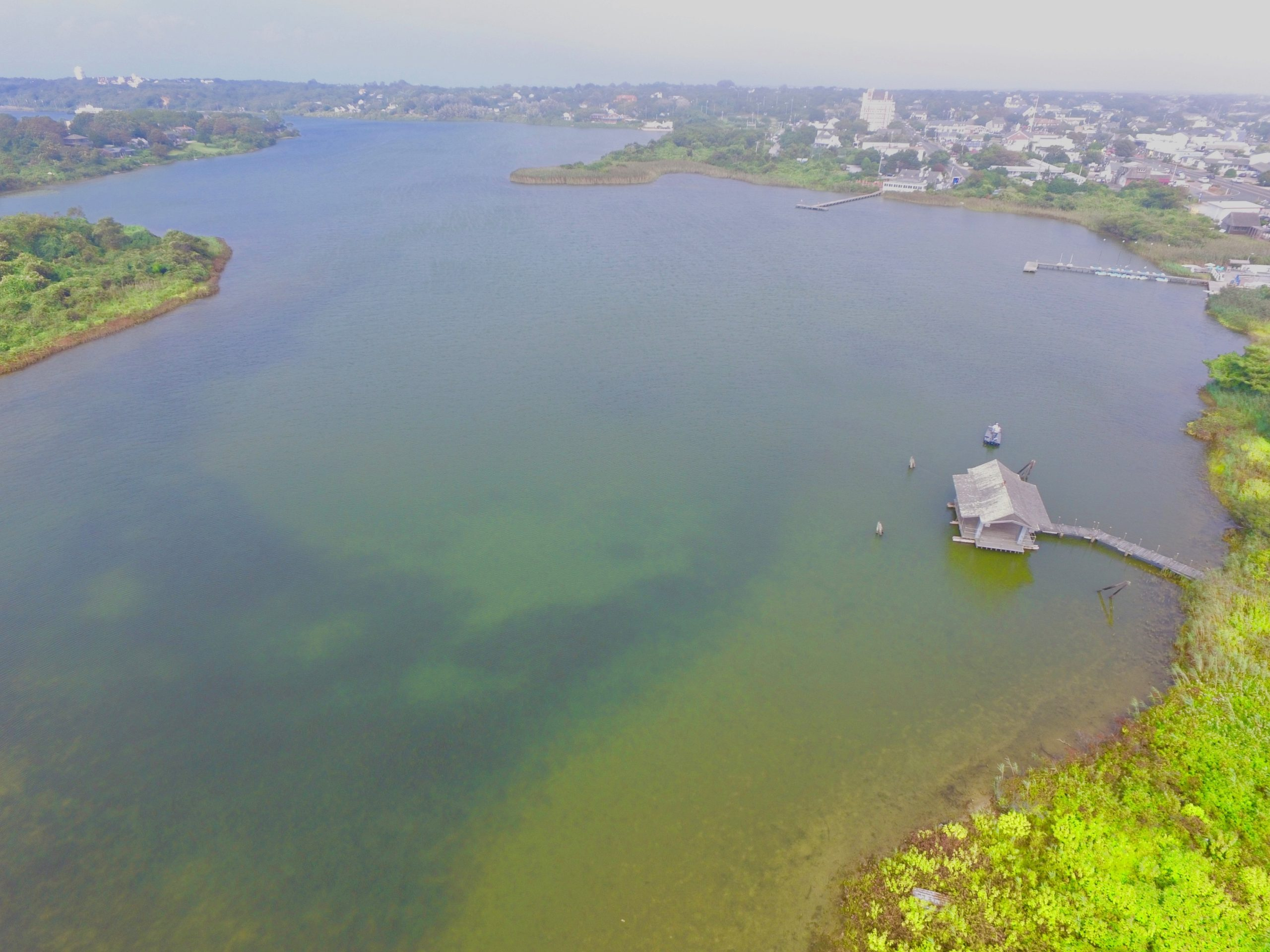 Fort Pond in Montauk was one of two water bodies that saw toxic blooms of blue-green algae in East Hampton Town in 2020.