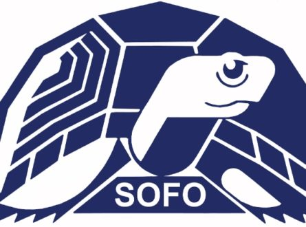 SOFO: Zoom Presentation: Sharks, Awareness Inspires Conservation – A Shark Education Program by the Atlantic White Shark Conservancy