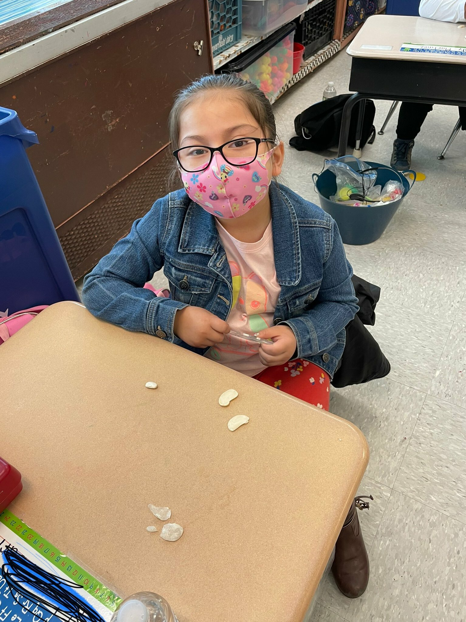 Hampton Bays Elementary School kindergartners in Kathleen Palmieri's class have been studying plant seeds. They recently soaked lima bean seeds in water, removed the seed coat and explored the various parts of the seed.