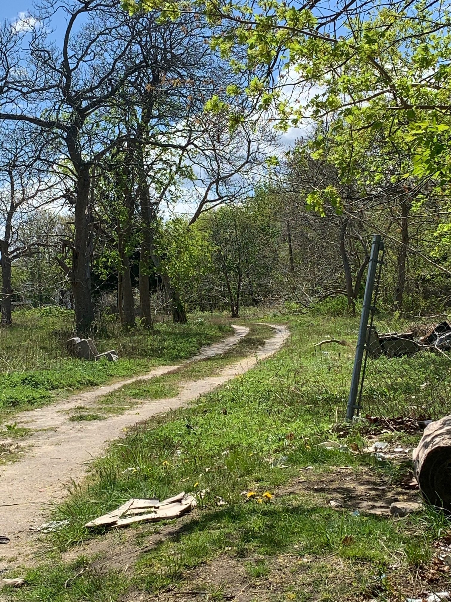 The path along the rear of the town property.