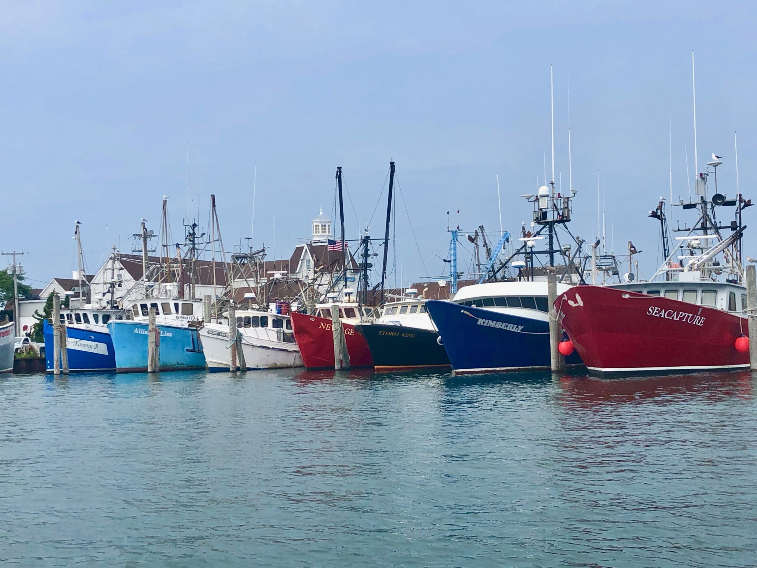 Scientists still start studying fish migrations this summer as a baseline for tracking how stock distributions change after industrial scale wind farms start being built south of New England.