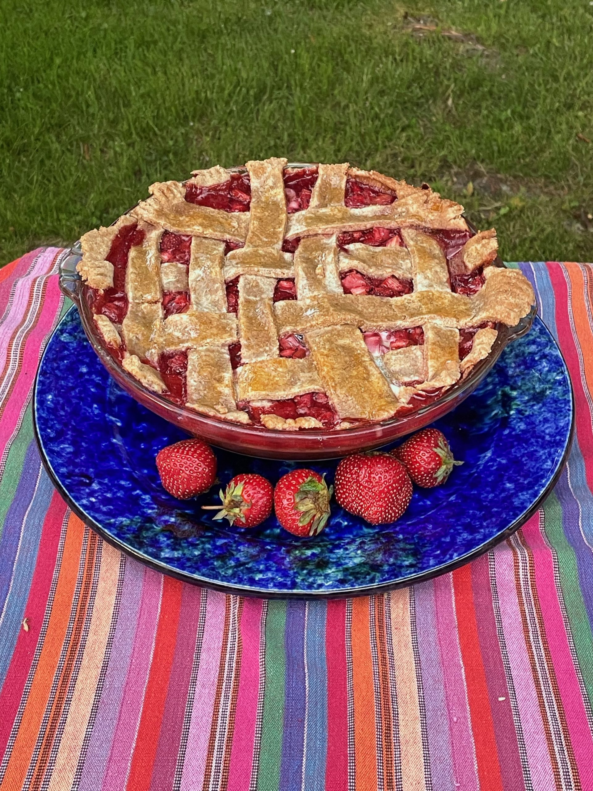 Strawberry rhubarb pie made with all local ingredients, except the cornstarch. (tip: switch sugar out for honey).