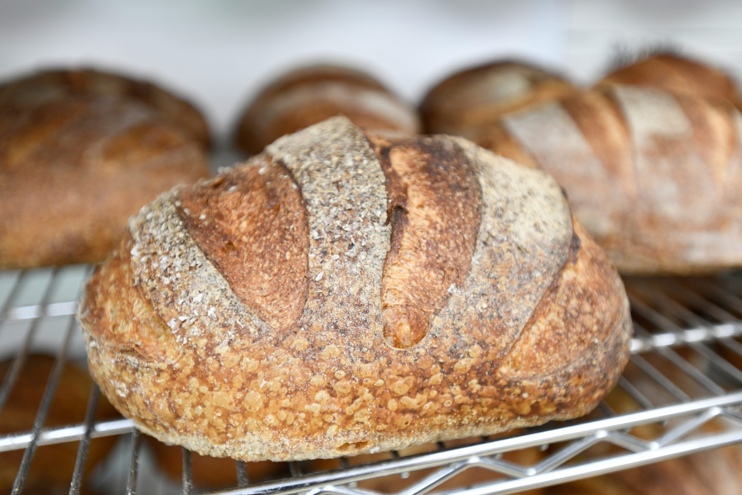 Freshly baked loaves.  DANA SHAW