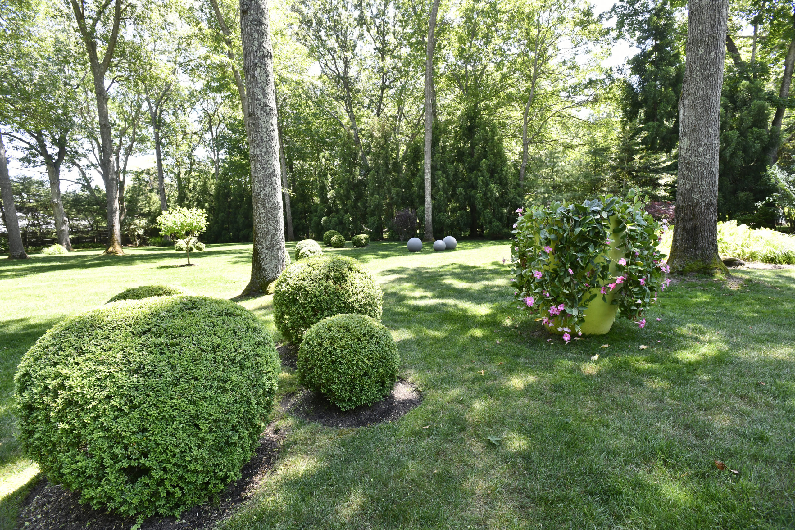 Frederico Azevedo's North Haven garden.   DANA SHAW