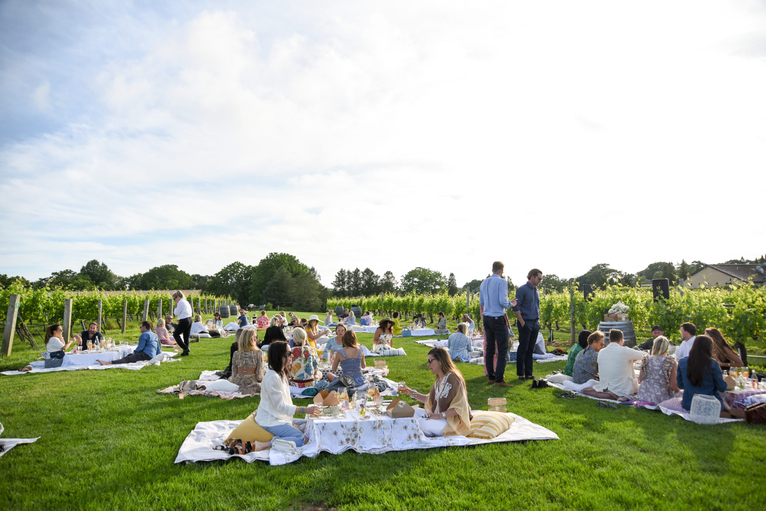 A dinner in the vines on June 25 to celebrate Wölffer's new Own Rooted Merlot Rosé.