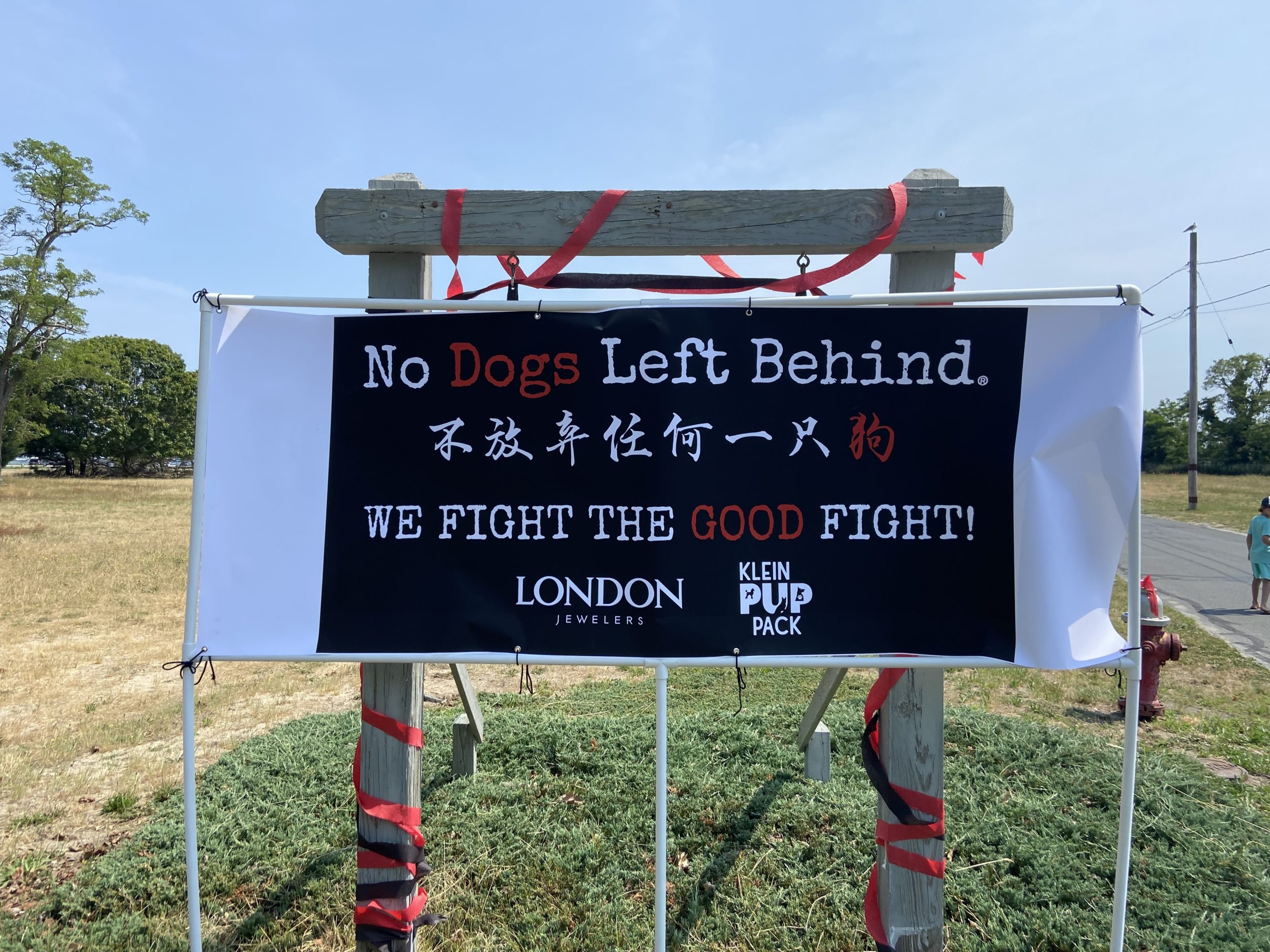 Nearly 100 people registered for Saturday's walk hosted by No Dogs Left Behind