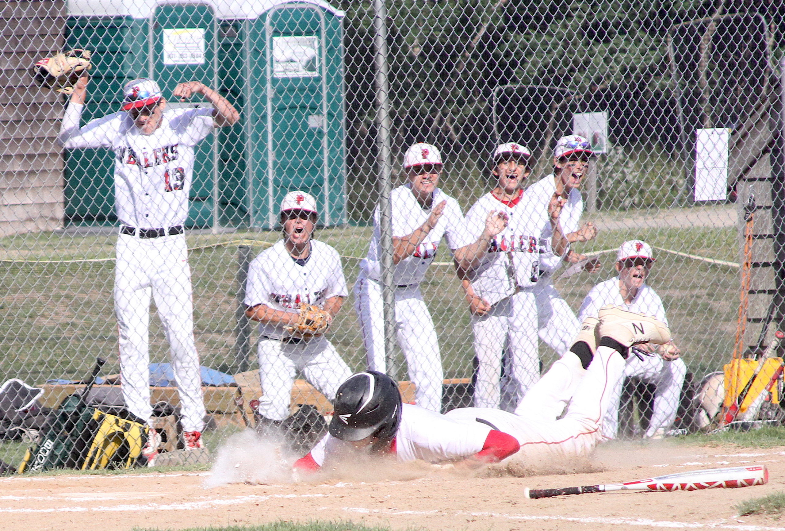 The Pierson bench erupts as freshman Charles Schaefer slides into home plate to put the Whalers out front 4-2. DESIRÉE KEEGAN