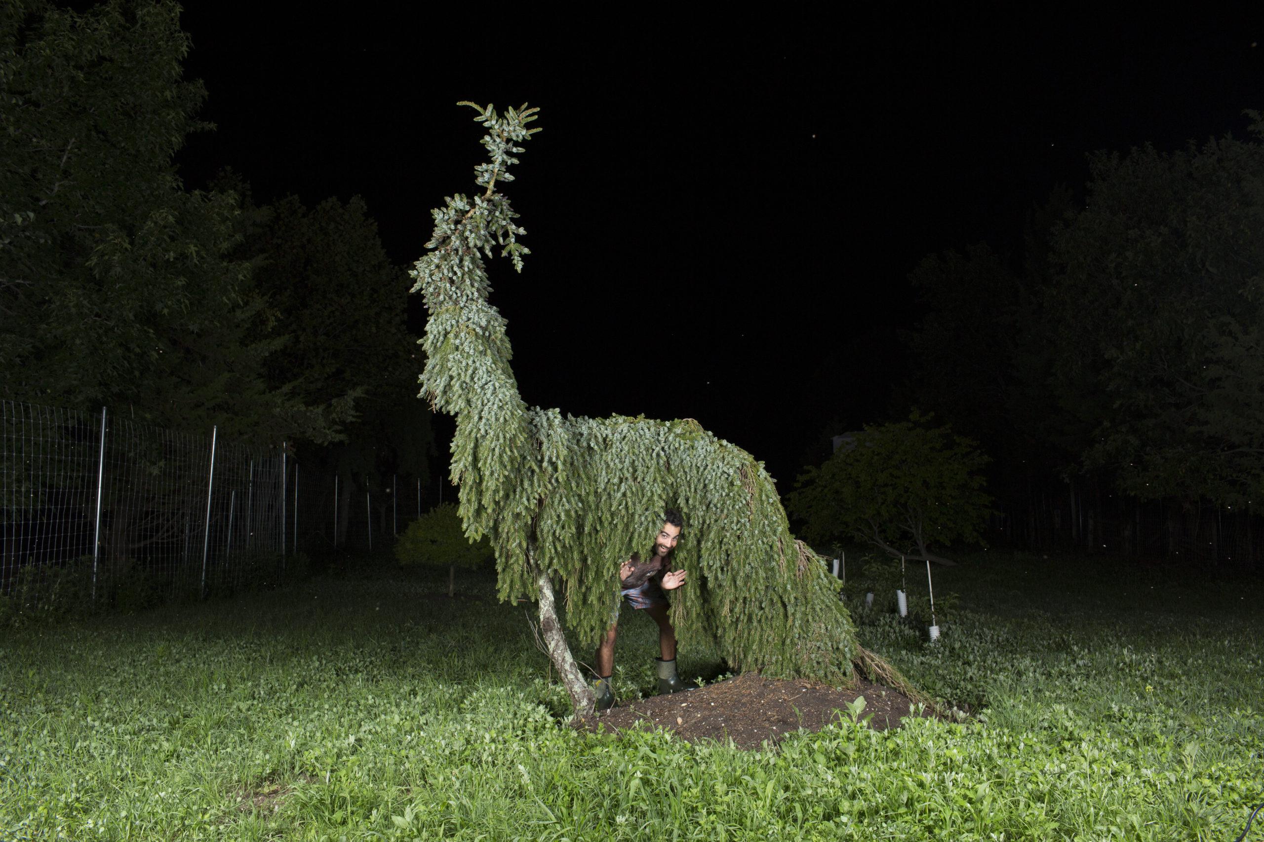 Tucker Marder at the Folly Tree Arboretum. COURTESY TUCKER MARDER