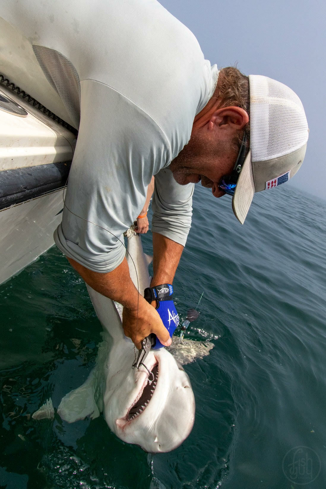 Captain Walter Zublionis tags a baby white shark