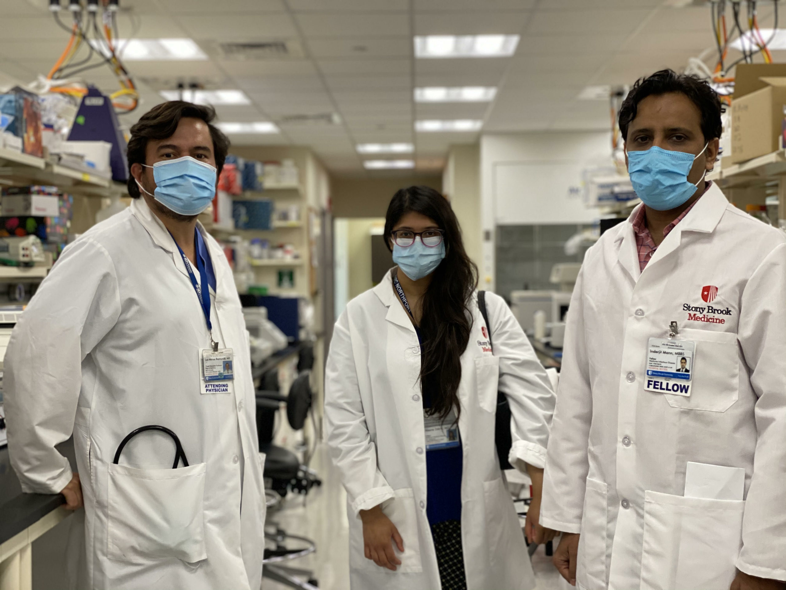 researchers study ticks in Stony Brook lab