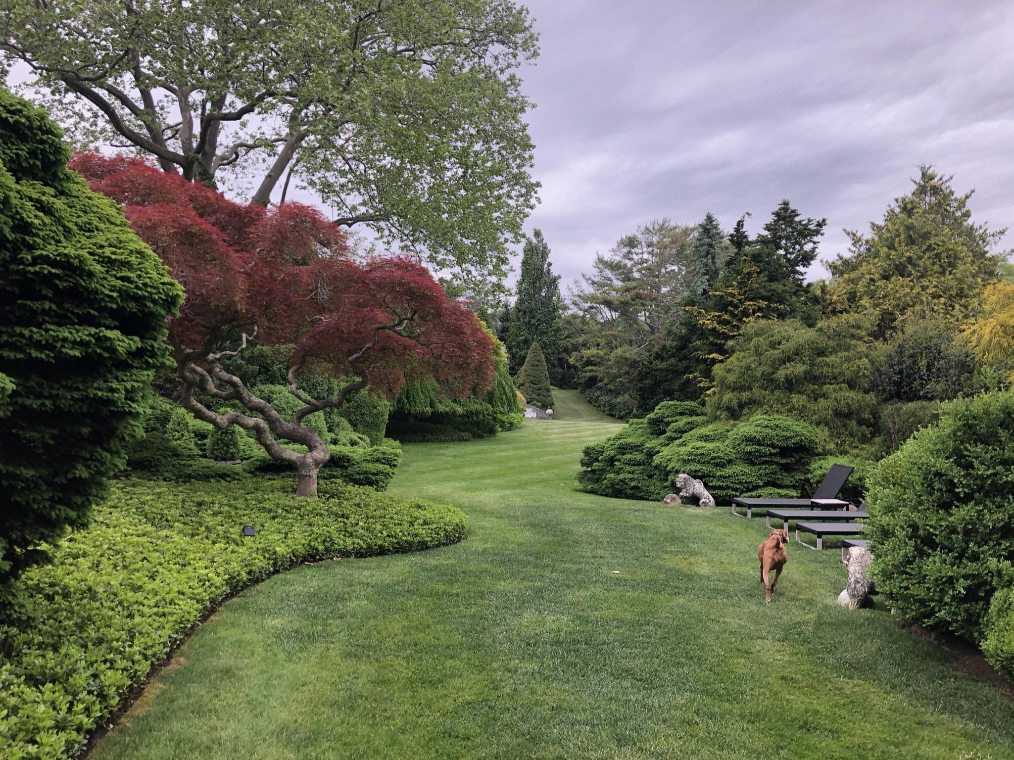 Tony Ingrao and Randy Kemper's East Hampton garden.