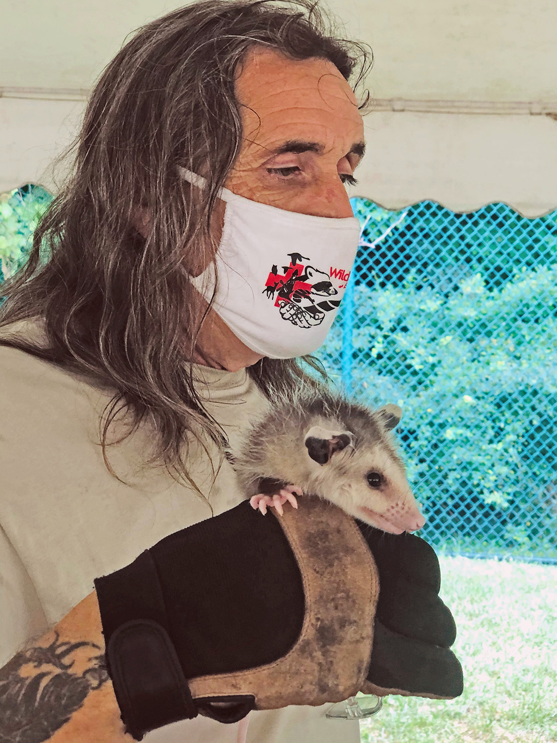 Dell Cullum with a young opossum he rescued and rehabilitated. COURTESY DELL CULLUM