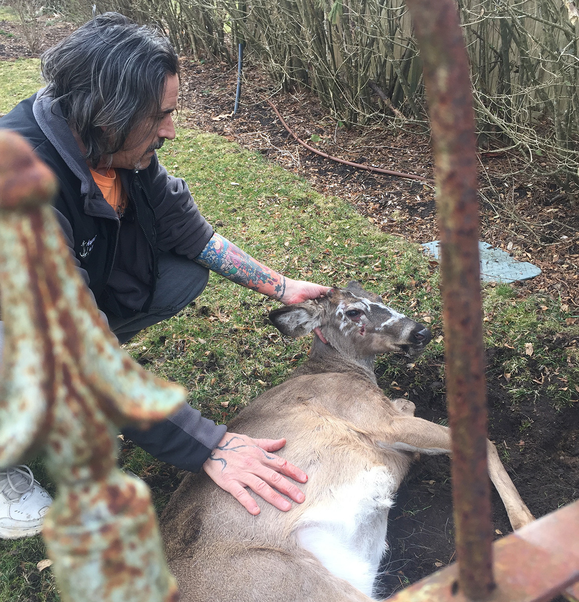 Dell Cullum with a deer he rescued. COURTESY DELL CULLUM