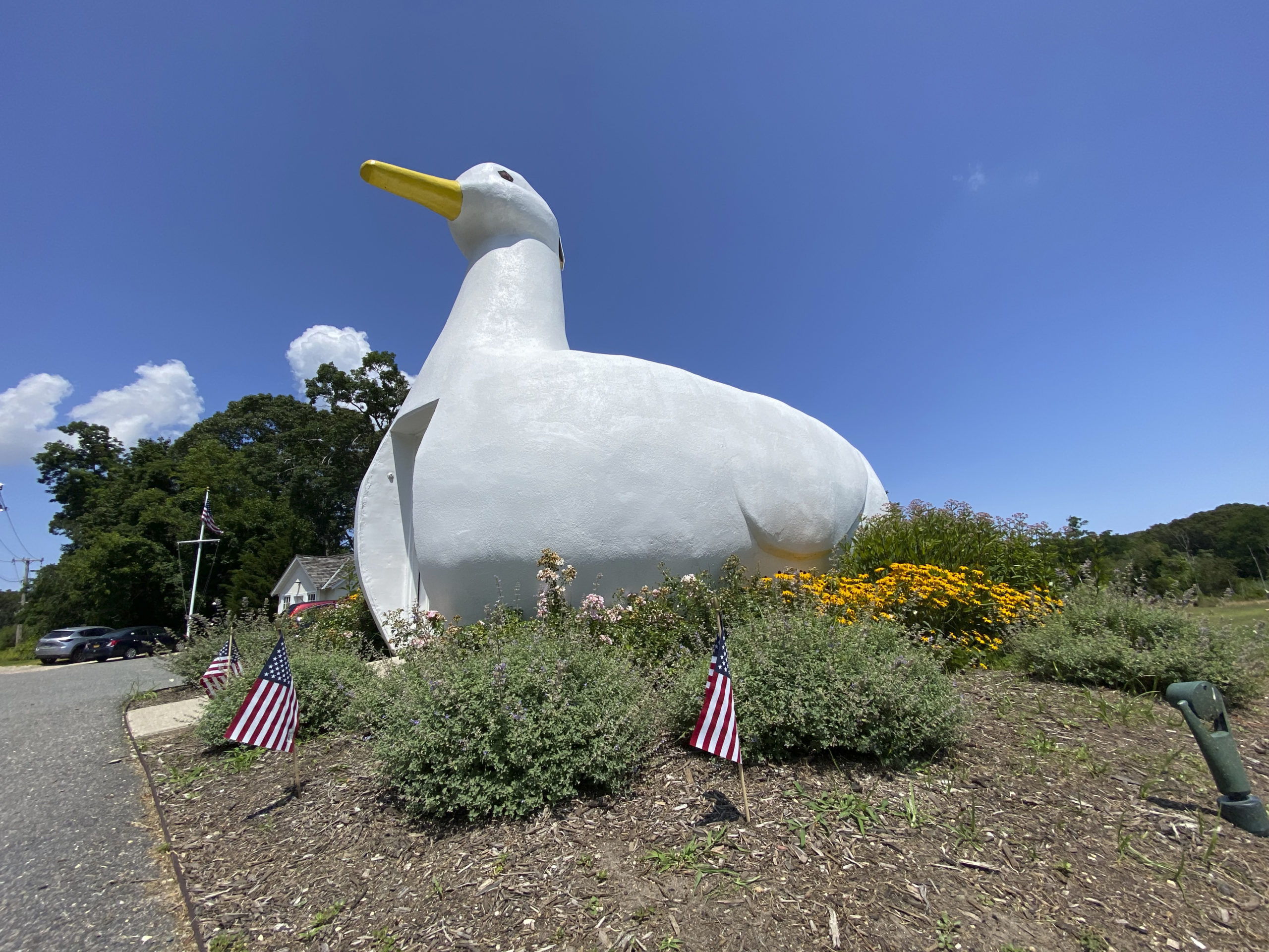 The Big Duck in Flanders is celebrating its 90th birthday.  DANA SHAW