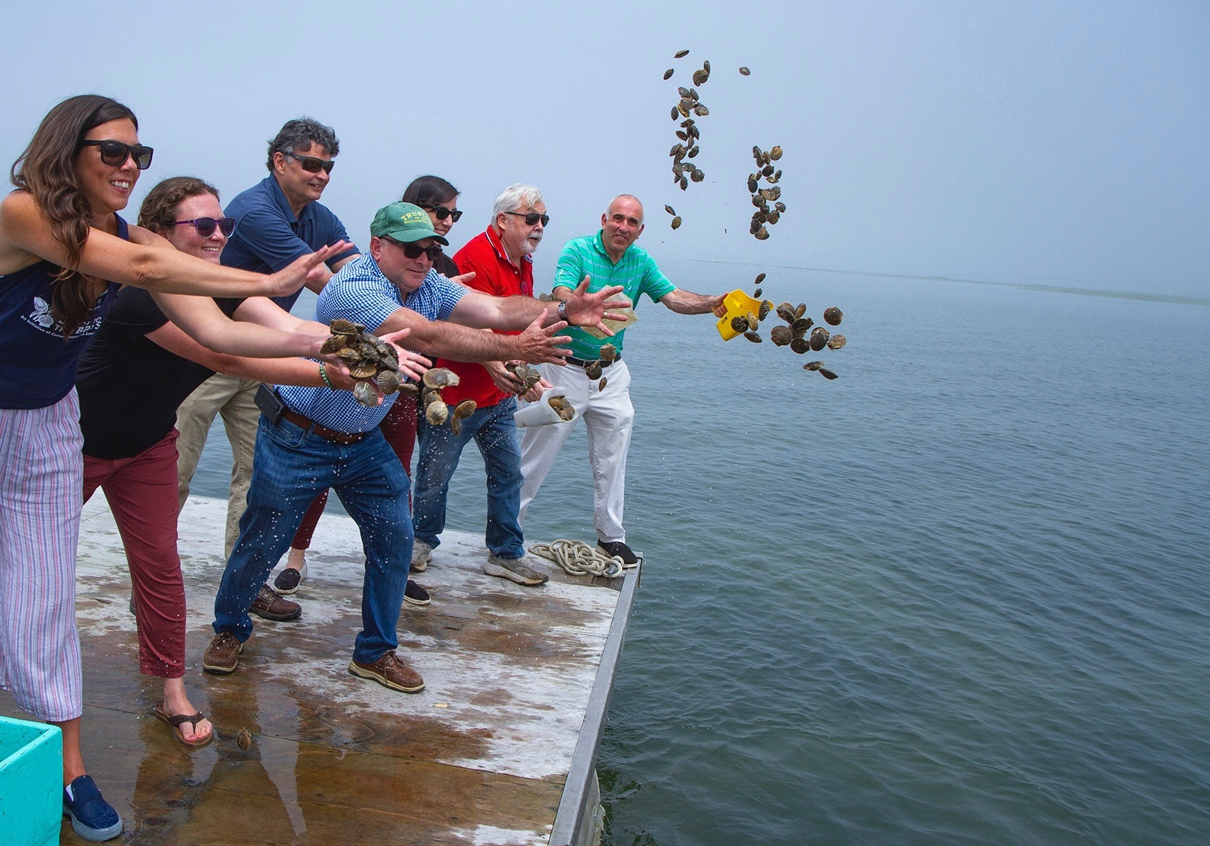 Cornell Cooperative Extension staff and Southampton Town officials throw baby scallops into the waters of Tiana Bay as a part of a new water quality program to restore scallop populations and habitat.