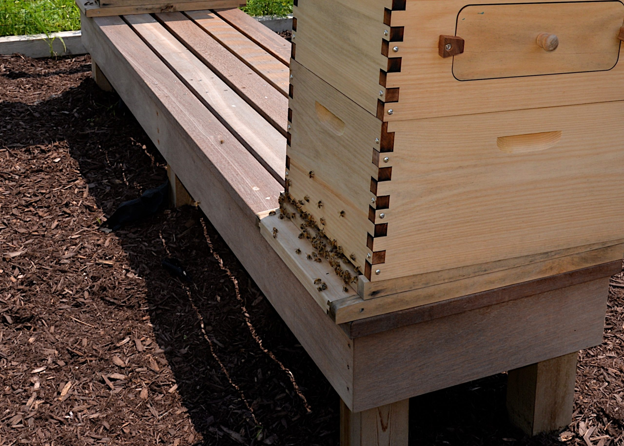A beehive at the Wainscott agrihood.