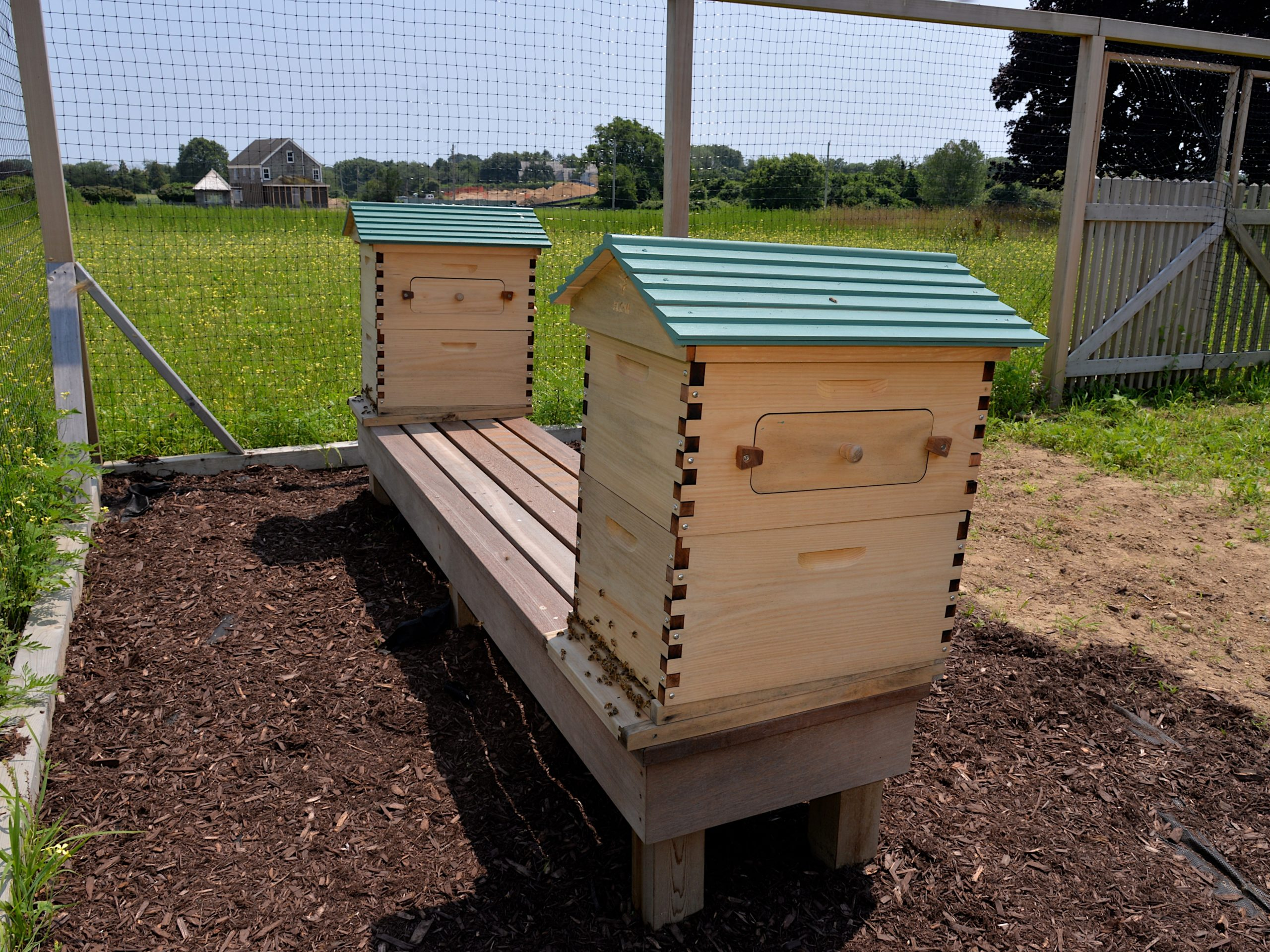 Beehives at the Wainscott agrihood.KYRIL BROMLEY