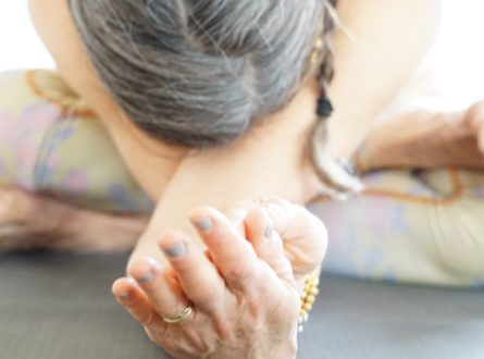 Beginner Yoga with Stacy at Mandala