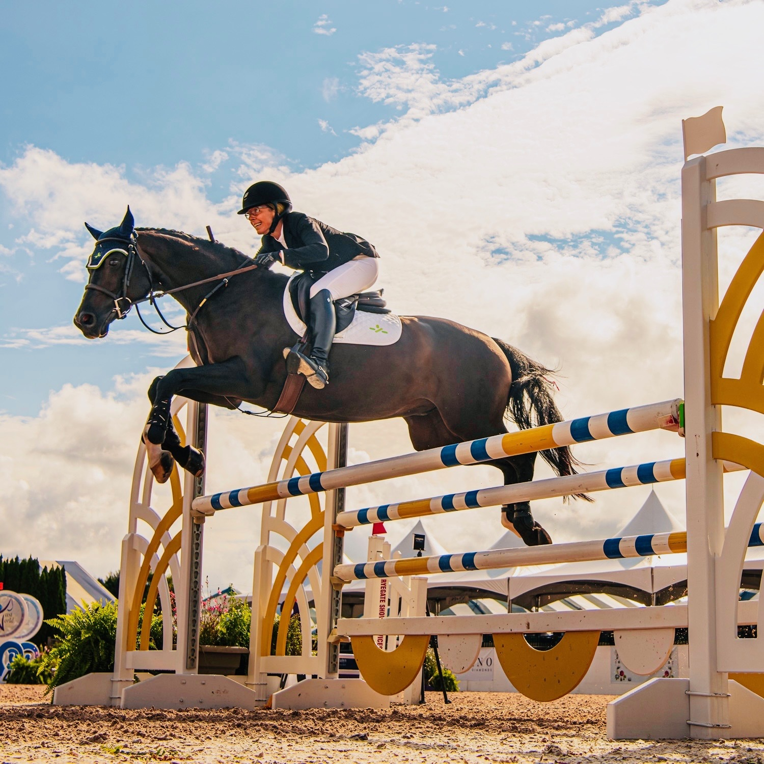 Sagaponack resident Dana Trotter and her horse, Balou's Boy, took the blue ribbon in the $5,000 Adult Jumper Classic at the Hampton Classic on Sunday, in a 52-horse field.