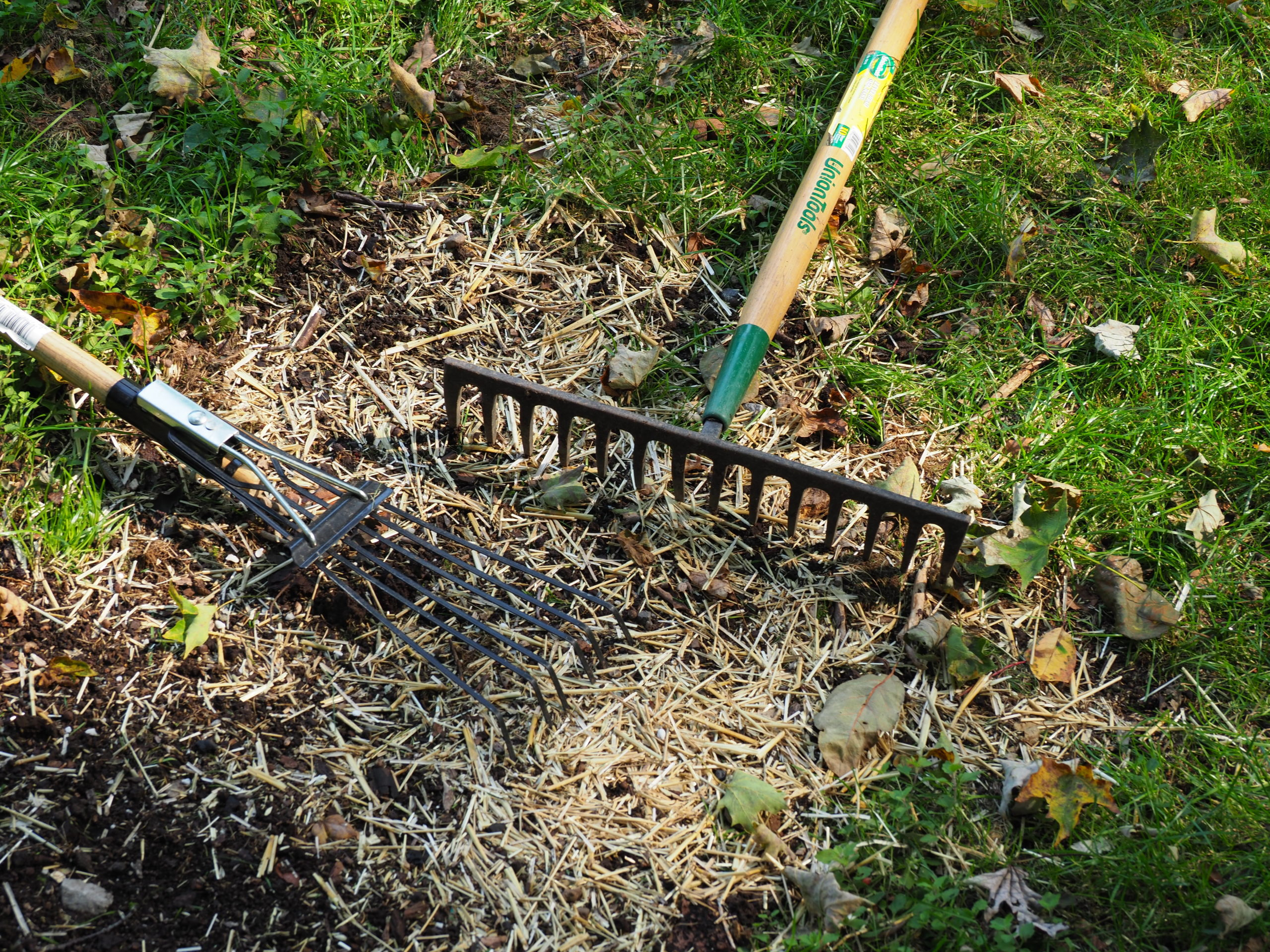 The two tools used in this project were a 5-inch steel fan rake to rough up the patch area and remove the dead grass and weeds.  The metal tine rake has 3 inch tines over 15 inches and is used for leveling, raking and tamping.