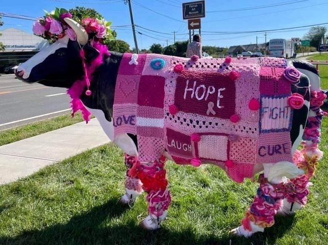 The Coalition for Women's Cancers at Stony Brook Southampton Hospital is drawing attention to Breast Cancer Awareness Month during October with the placement of Molly the cow at the Phillips Family Cancer Center on Route 27. It is to  remind women to get their annual